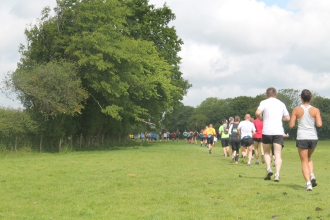 weald challenge trail course review