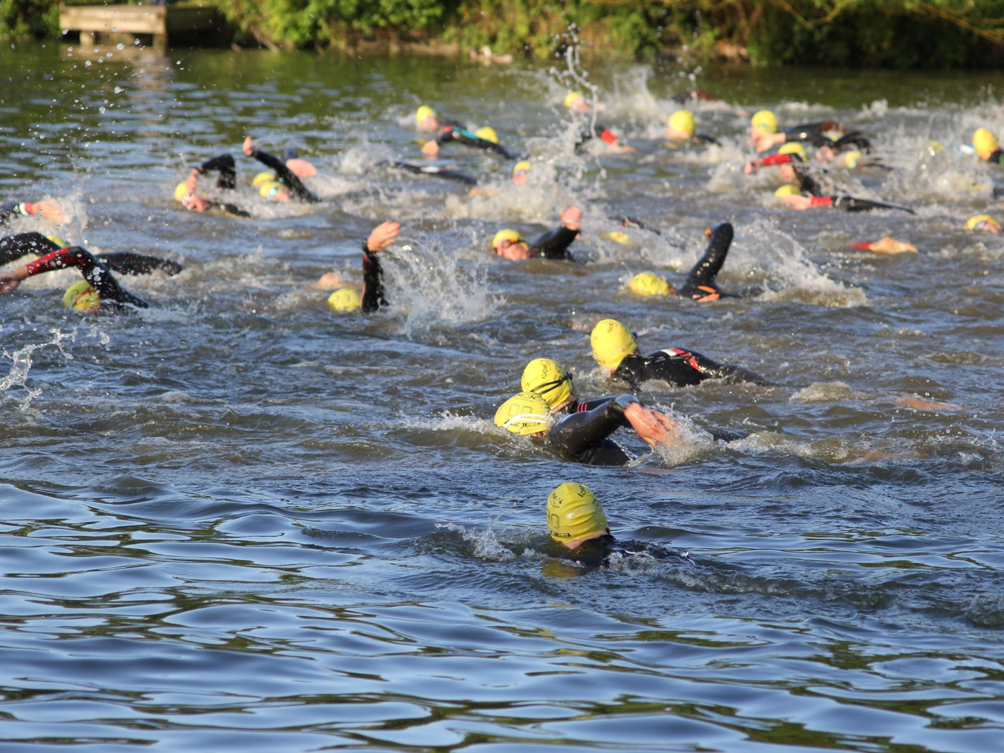 Isoman 2015 swim